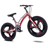 DDSCT Kinderfahrrad 20 Zoll Magnesiumlegierung einteiliges Mountainbike 2,5 Zoll Breiten Reifen Doppelscheibenbremse Dämpfung 1-Gang-Fahrrad für Mädchen und...