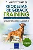 Rhodesian Ridgeback Training – Hundetraining für Deinen Rhodesian Ridgeback: Wie Du durch gezieltes Hundetraining eine einzigartige Beziehung zu Deinem...