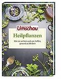 Apotheken Umschau: Heilpflanzen: Wie sie wirken und uns helfen, gesund zu bleiben (Die Buchreihe der Apotheken Umschau, Band 4)