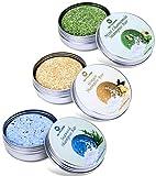 OCYCLONE Haar Shampoo Bar, Ingwer Seetang und Pfefferminz Kamille Haarseife zur Haarwuchsförderung, Anti Schuppen und Öl-Kontrolle, Vegan Natürliche Bio...