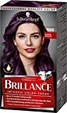 Brillance Intensiv-Color-Creme Haarfarbe 888 Dunkle Kirsche Stufe 3, 3er Pack(3 x 160 ml)