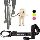 BIKE AND DOG Fahrrad Hund: um einen oder mehrere Hunde mit dem Fahrrad auszuführen. Patentiertes Produkt (schwarz)