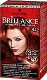 Brillance Intensiv-Color-Creme 842 Kaschmirrot, 3er Pack (3 x 143 ml)