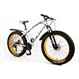 MYTNN Fatbike 26 Zoll 21 Gang Shimano Fat Tyre Mountainbike 47 cm RH Snow Bike Fat Bike (Silber-Gold)