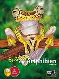 Entdecke die Amphibien (Entdecke - Die Reihe mit der Eule: Kindersachbuchreihe)
