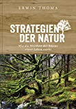 Strategien der Natur: Wie die Weisheit der Bäume unser Leben stärkt. Evolution und Biologie, Geschichten und Mythen – was wir vom Wald lernen können.
