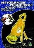 Der Schreckliche Pfeilgiftfrosch: Phyllobates terribilis