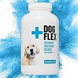 Nahrungsergänzungsmittel Gelenke für Hunde, Grünlippmuschelpulver Hund, Schutz bei Arthrose, Glucosamin, Chondroitin, MSM, Teufelskralle hochdosiert - 150...
