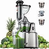 Slow Juicer, 75 mm Wide Mouth, Entsafter für Gemüse und Obst, Babynahrung und Eiscreme, Rezept, Vertikal