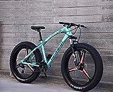 GFF Mountainbikes, 24 Zoll Fat Tire Hardtail Mountainbike, Doppelfederung und Federgabel All Terrain Mountainbike, Herren und Damen für Erwachsene