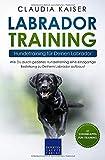 Labrador Training – Hundetraining für Deinen Labrador: Wie Du durch gezieltes Hundetraining eine einzigartige Beziehung zu Deinem Labrador aufbaust (Labrador...