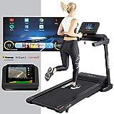 HAMMER Laufband Life Runner LR22i TFT, platzsparendes Fitnesslaufband zum Klappen, gelenkschonende Lauffläche, Handpulssensoren, 10 Zoll Display, Fitness-App,...