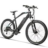 Fitifito MT27,5 Elektrofahrrad Mountainbike E-Bike 48V 250W Heckmotor; 48V13Ah 624W Lithium-Ionen mit USB Anschluss