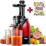 Entsafter Slow Juicer, TIBEK Entsafter Gemüse und Obst Profi, Ruhiger Motor mit Umkehrfunktion, 2 Saftbehälter und Rezepte für Gemüse und Früchte,...