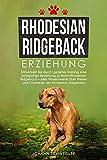 Rhodesian Ridgeback Erziehung: Entwickeln Sie durch gezieltes Training eine einzigartige Beziehung zu Ihrem Rhodesian Ridgeback – Alles Wissenswerte über...