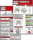 EKG Basic Set (2er Set) - Herzrhythmusstörungen, EKG Auswertung - Medizinische Taschen-Karte