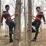 JIEJIE Elektriker Holz Pole Fuß Schnalle, Kletterbäume Artifact, Profi-Tree Climbing-Werkzeug mit Sicherheitsgurt, einfach zu bedienen (Farbe: 200 Modell)...
