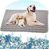 All--In Kühlmatte Hunde Waschbar rutschfest Weich Kühldecke für Haustiere Sommer (70*100, Grau)